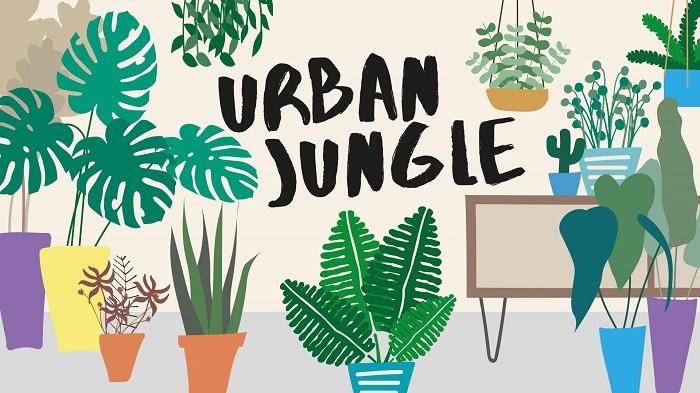 Urban Jungle07.09.19